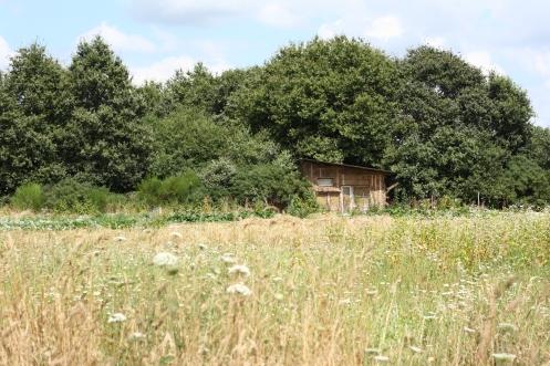 Une cabane aux Fosses Noires.