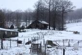 Ballade dans les Montagnes Noires