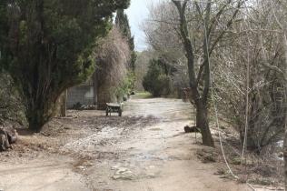 Le chemin devant la maison