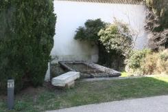Le jardin du monastère