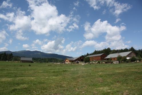 Les bâtiments actuels